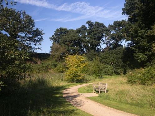 Broadland Business Park lakeside walk